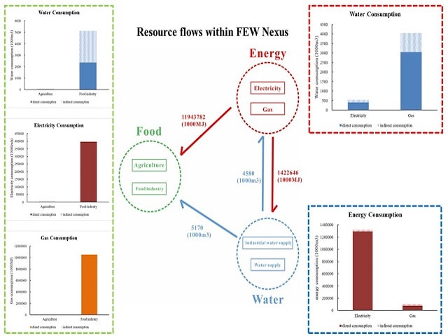 Assessing the food-energy-water use intensity by Input-Output Analysis in Tokyo