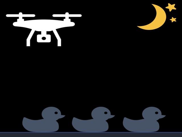 UAVと熱赤外カメラを用いたカモ類の忌避性に配慮した調査方法